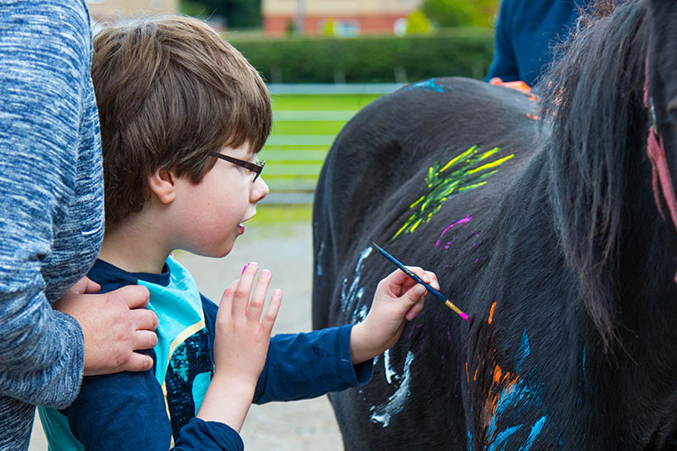 Young boy painting on the side of a brown pony