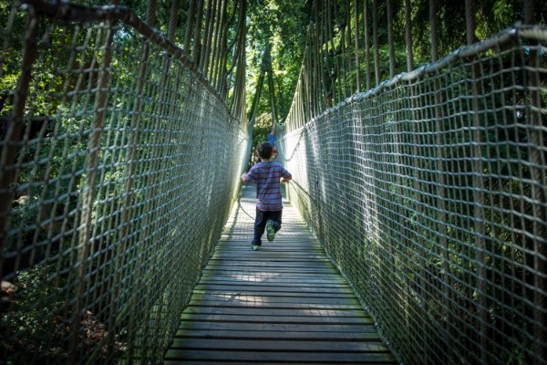 Young boy running across a rope bridge